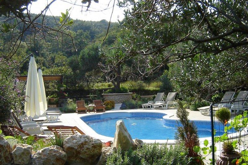 Pool-Apartments/4 Mirjana -Rab