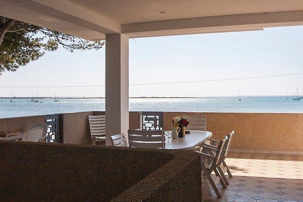 villa am strand von porto cesareo ferienhaus in porto cesareo mieten. Black Bedroom Furniture Sets. Home Design Ideas