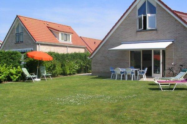 Zwin Scheldeveste in Breskens - immagine 1