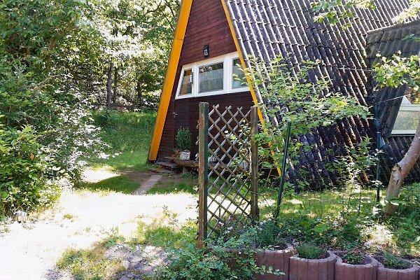 Nurdachhaus in Gossersweiler-Stein - immagine 1