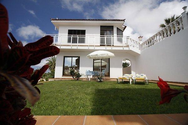 Casa Lilo à El Sauzal - Image 1
