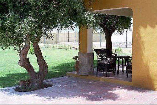 Casa Chipe en Canos de Meca - imágen 1