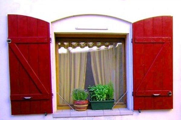 Maison de Village à St. Thibéry - Image 1