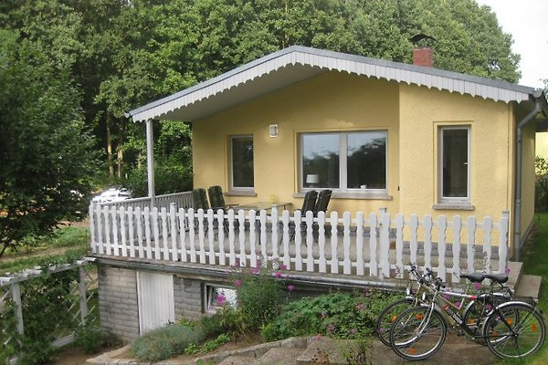 **Ferienhaus am Tollensesee** à Groß Nemerow - Image 1