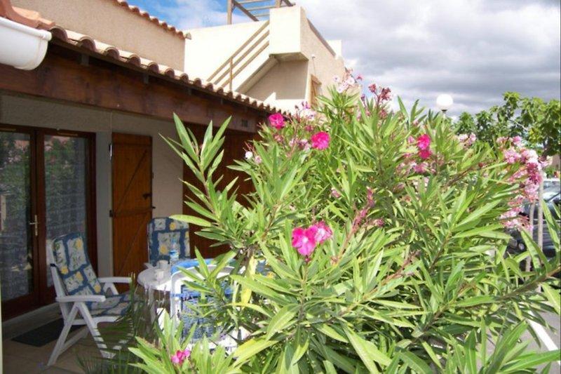 Oleandergesäumte Terrasse