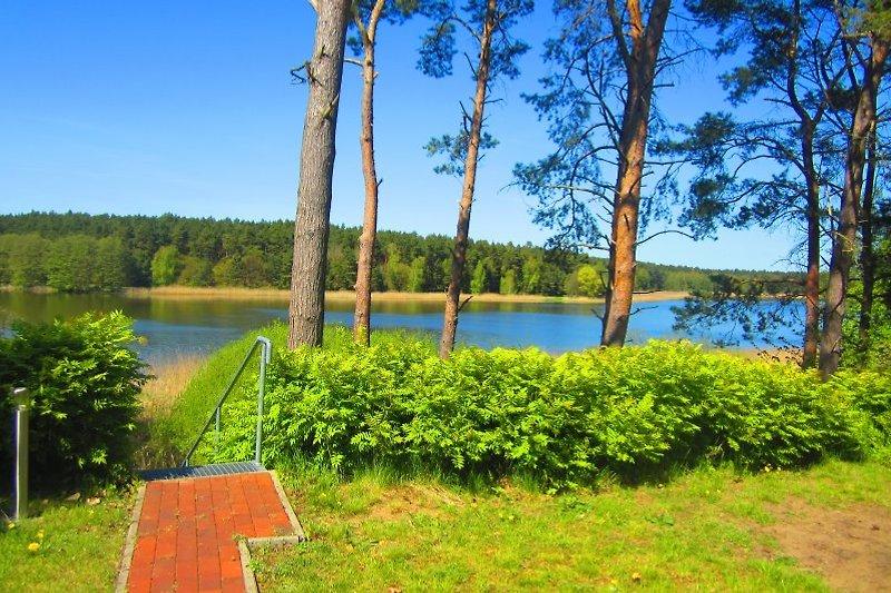 Panoramablick  zum See