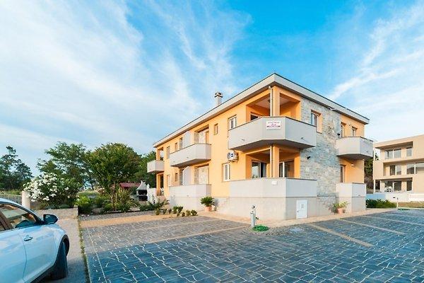 Apartmani Dora (Rangen3 *) in Privlaka - Bild 1