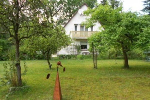 Ferienhaus  in Hösseringen - Bild 1