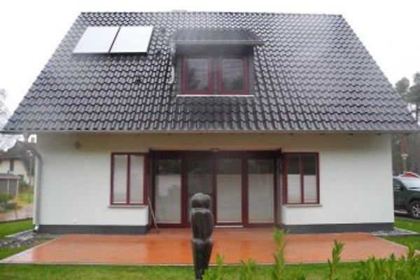 Ferienresidenz-Ruegen.de à Glowe - Image 1