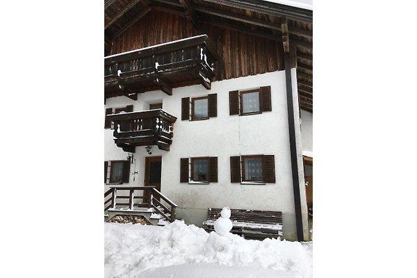 Adlerhorst Tirol in Buch in Tirol - immagine 1