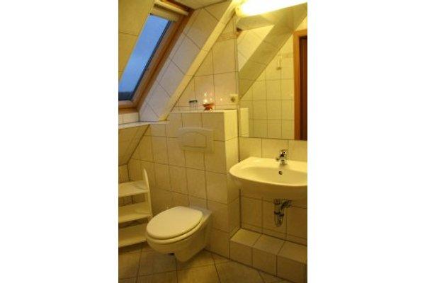 das kleine Bad hat auch eine Dusche