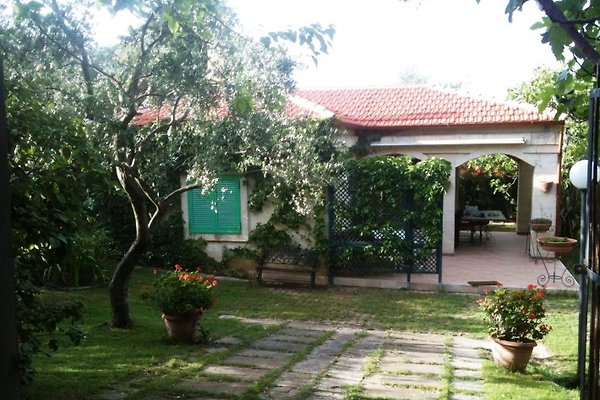 Piccolo Casale - Country House in Molfetta - Bild 1