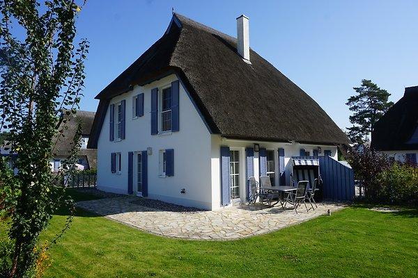 Das Usedomhaus à Karlshagen - Image 1