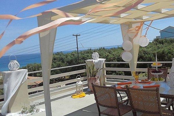 VILLA+Gästehaus am Strand -5% offer in Tsilivi - Bild 1
