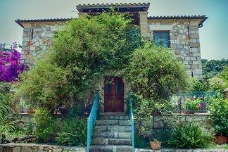 Harmonie Houses   Hause Konstantino