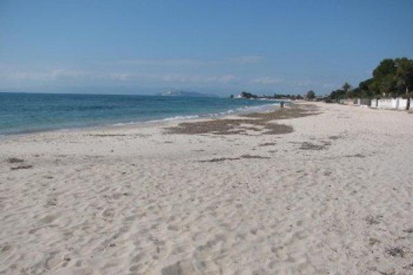 Sardaigne du Sud 100 mt de la mer. à Quartu Sant Elena - Image 1
