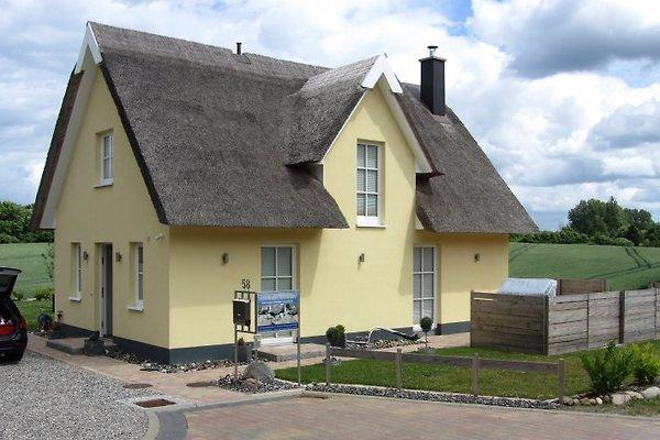 Ferienhaus Sarcander à Glowe - Image 1