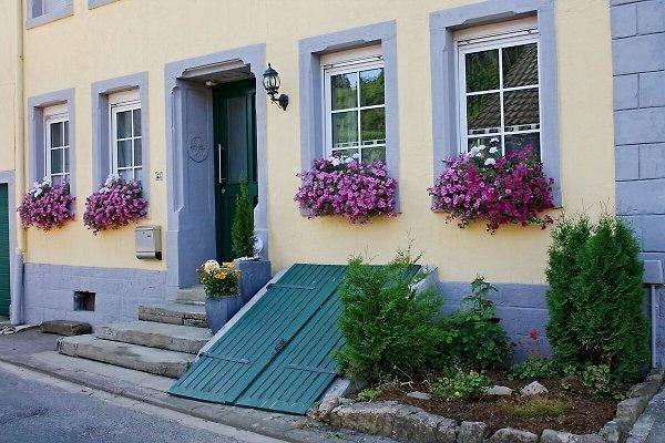 Ferienhaus  à Wellen - Image 1