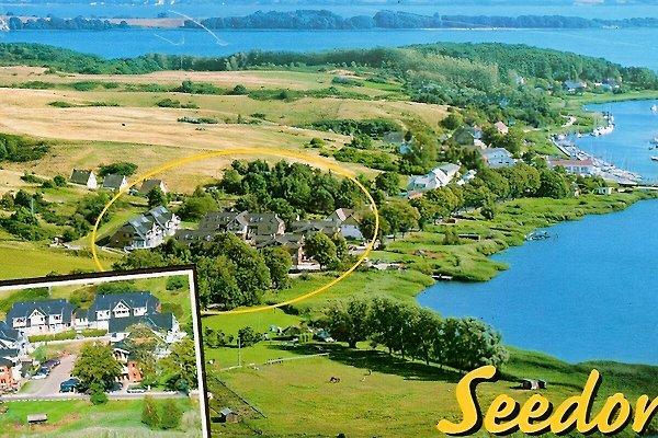 Ferienpark Seedorf Sauna WLan à Sellin - Image 1