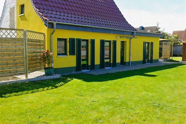 Birkhoffs Ferienhaus à Ueckermünde - Image 1