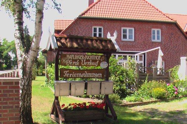 Ferienwohnung a/Haflingerhof in Seevetal - immagine 1