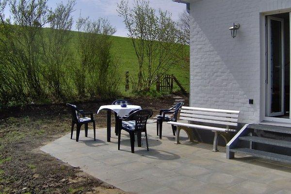 Strandhaus-Kollmar in Kollmar - immagine 1
