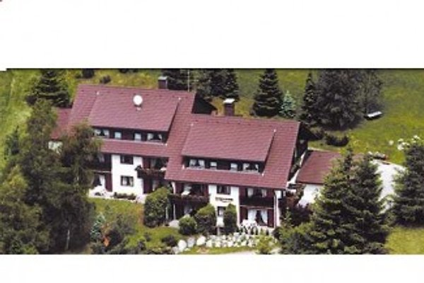 Haus Heidelberg à Falkau - Image 1