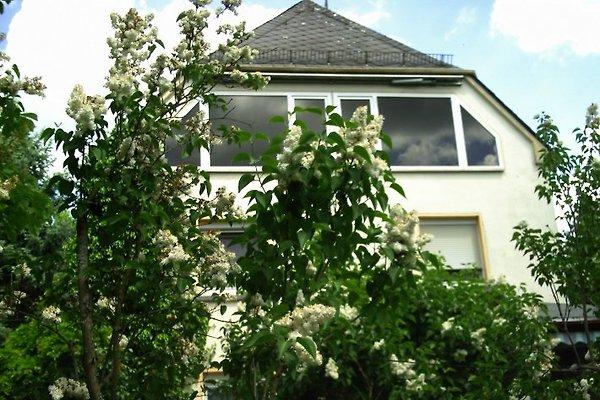 Ferienwohnung  in Weisel - immagine 1
