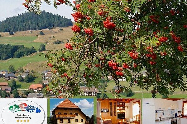 4**** Ferienappartement Gisela en Bernau im Schwarzwald -  1