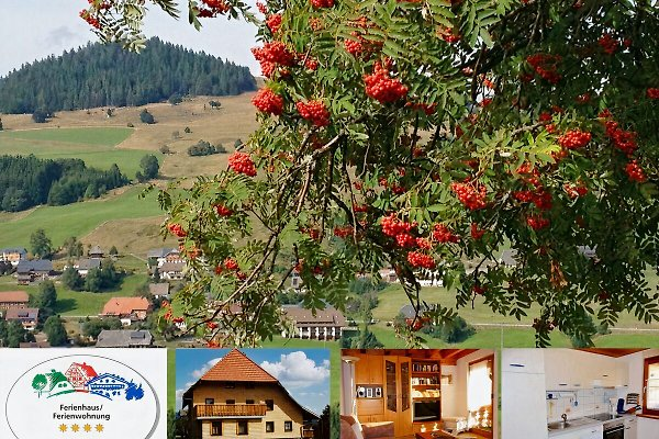 4**** Ferienappartement Gisela in Bernau im Schwarzwald - Bild 1