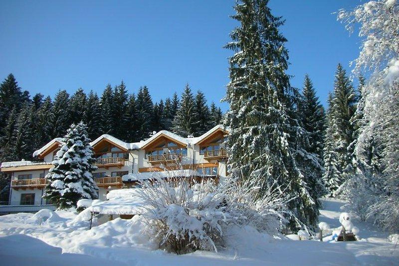 Winterparadies am Rande von Kitzbühel
