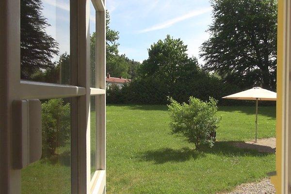 4* Gut Rattelvitz Ferienhaus in Gingst - immagine 1