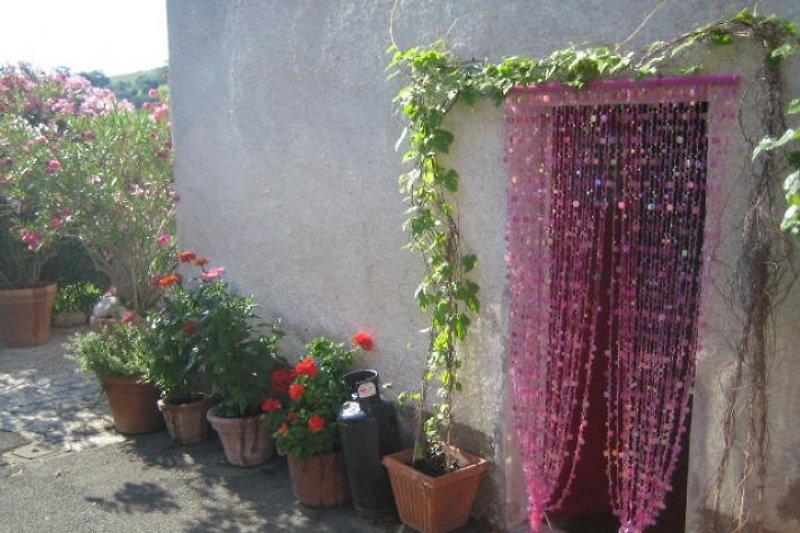 Casa Birgitta in Polveraia - immagine 2