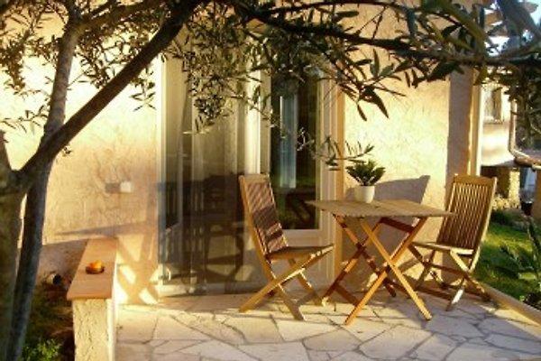 Studio de Provence / Côte d'Azur à La Motte - Image 1