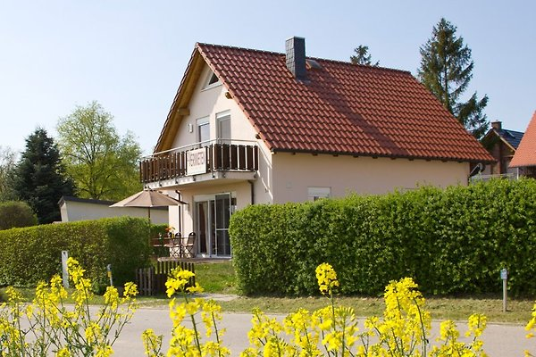 Unser Ferienhaus Seerose am Fleesensee