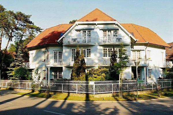 Anna Appartement in Siofok - Bild 1