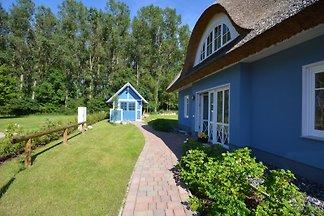 Baltic beach house
