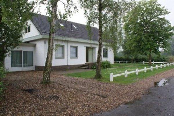 Heemsdael in Breskens - immagine 1