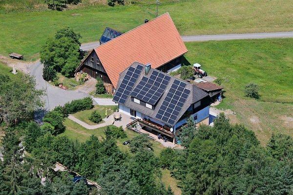 Bio-Hof Buchholz à Lauterbach - Image 1