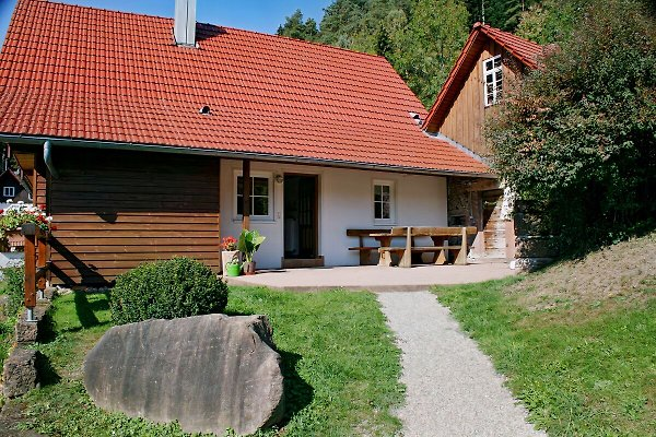 Rinkenbachhof in Schenkenzell - immagine 1