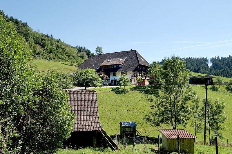 Rinkenbachhof