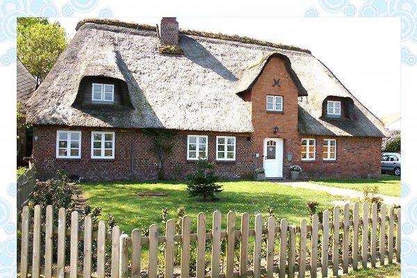 Maison de vacances à Bordelum - Image 1
