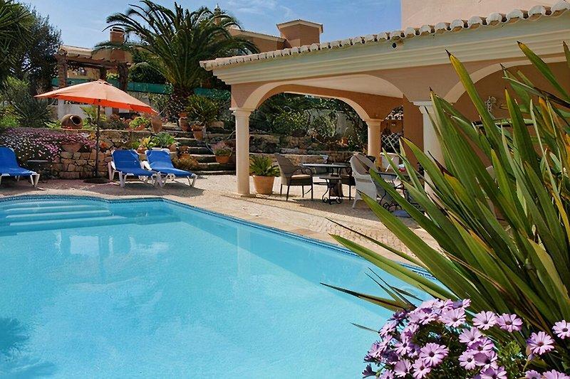 Ferienwohnung mit Pool (solarbeheizt) und wunderschönem Garten.