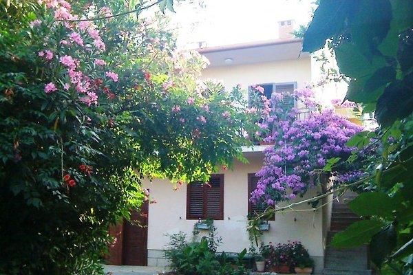 Haus in Blumen