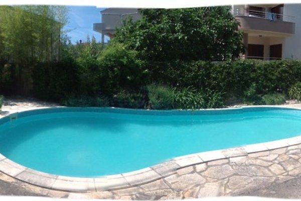fewo in villa pool garten meer ferienwohnung in zadar