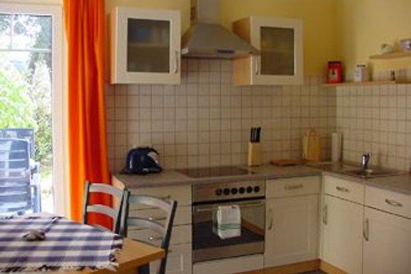Haus Michel 01 in Born - Bild 1