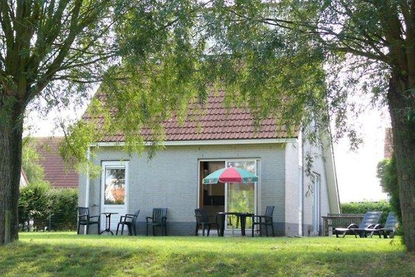 Zeeland Village- F.haus Schijf in Scharendijke - Bild 1