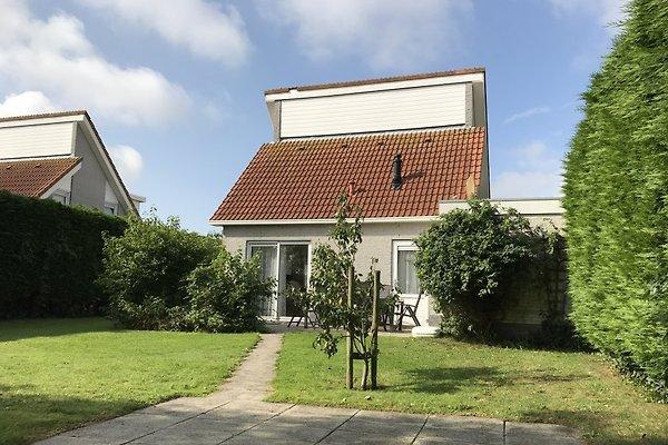 Ferienhaus Kohnen in Scharendijke - Bild 1