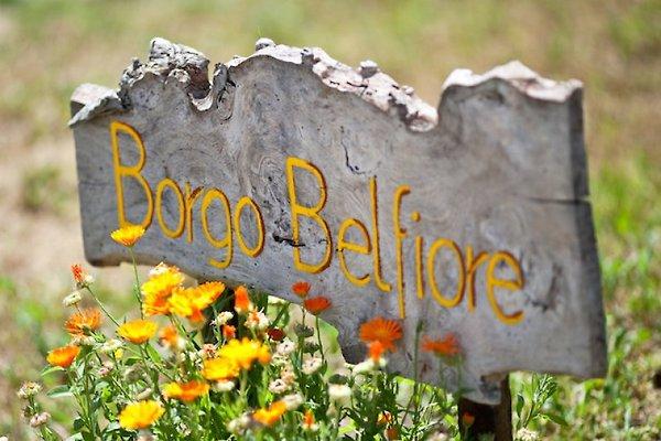 La Dolce Vita, Marche, Italie  à Montefortino  - Image 1