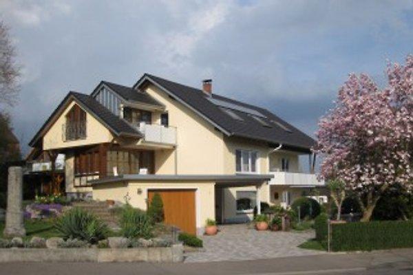 SEESTERN**** in Radolfzell - immagine 1